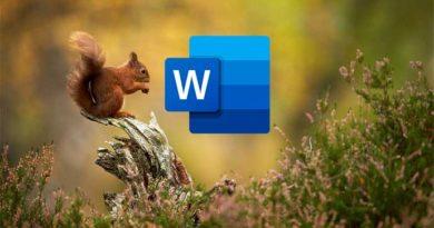 Microsoft Word Belgesine GIF Nasıl Eklenir?